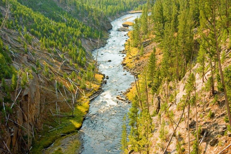Il fiume Yellowstone