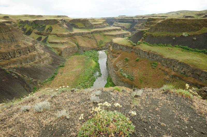 Fiume e canyon fotografie stock libere da diritti