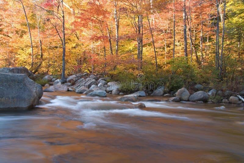 Fiume e fogliame di caduta, del New Hampshire (orizzontale) fotografia stock
