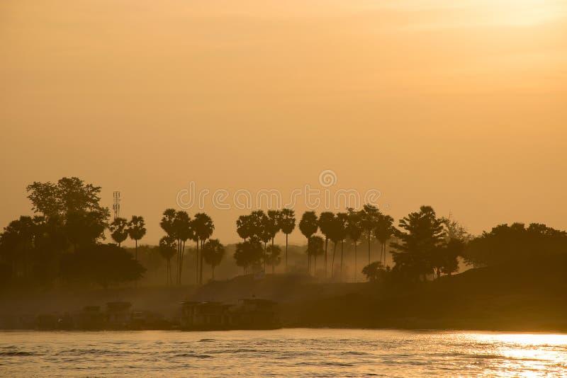 Fiume ed alba della palma da zucchero fotografia stock libera da diritti