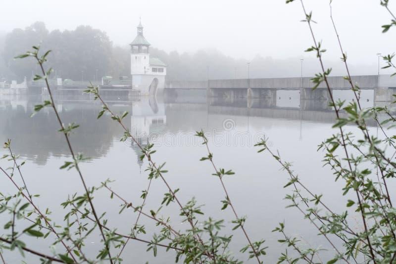 Fiume Lech con il lago cow a Augusta fotografia stock libera da diritti