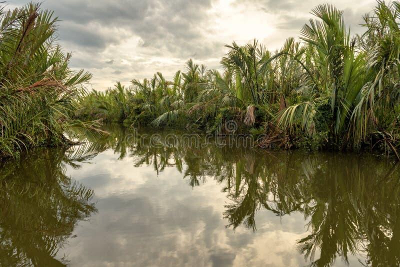 Fiume misterioso in una giungla al tramonto vicino a Tangalle, Sri Lanka immagine stock
