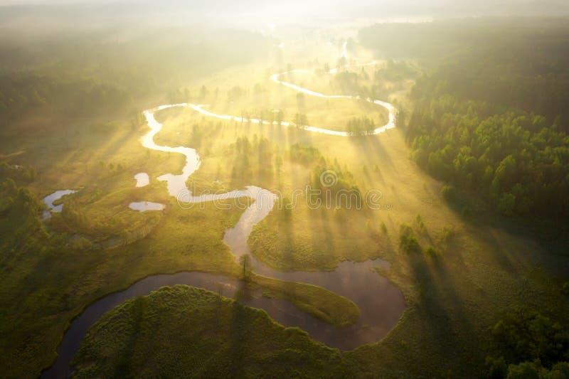 Fiume nebbioso di mattina al sole Vista aerea del paesaggio del fiume Vista della riva del fiume da sopra Natura di estate nei ra fotografie stock libere da diritti