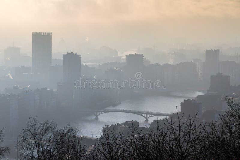 Fiume nebbioso Meuse a Liegi immagini stock libere da diritti
