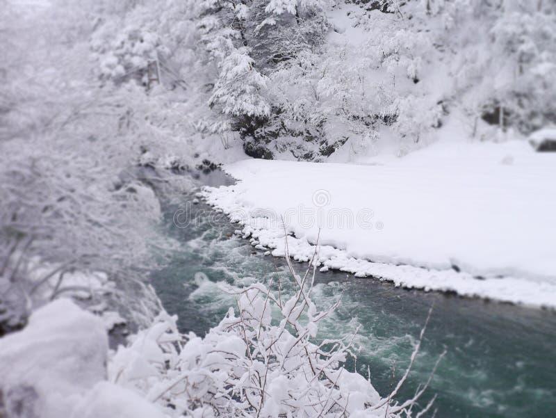 Fiume nell'inverno immagine stock libera da diritti