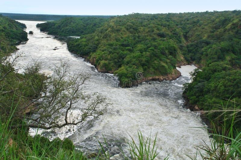 Fiume Nilo intorno a Murchison Falls fotografie stock libere da diritti