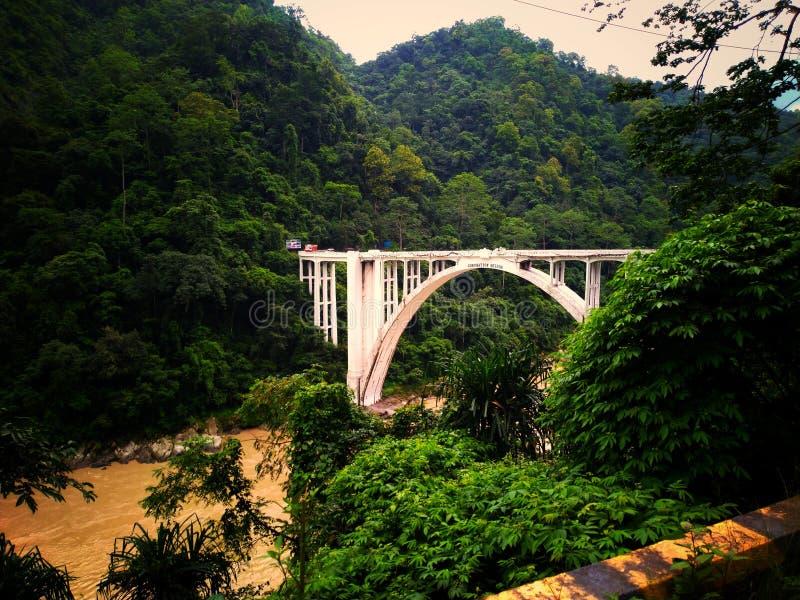 Fiume pieno del fango, ponte buono dell'architetto e lotti di verde fotografia stock