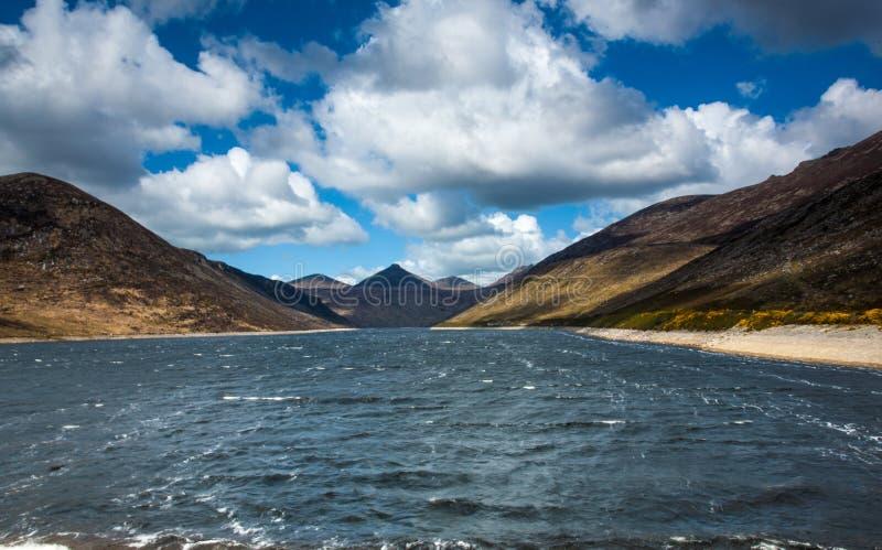 Fiume in valle silenziosa, contea giù, l'Irlanda del Nord fotografie stock