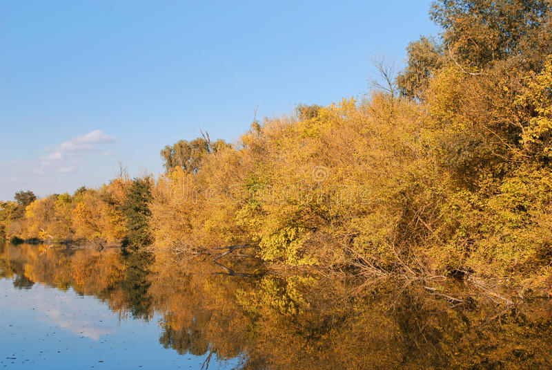 Fiume variopinto di autunno fotografie stock
