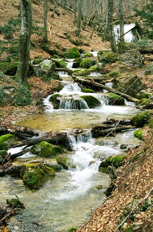 Download Fiume Veloce Della Montagna Immagine Stock - Immagine di paesaggio, verde: 7309137
