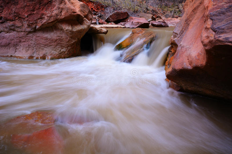 Fiume vergine in Zion National Park fotografia stock libera da diritti