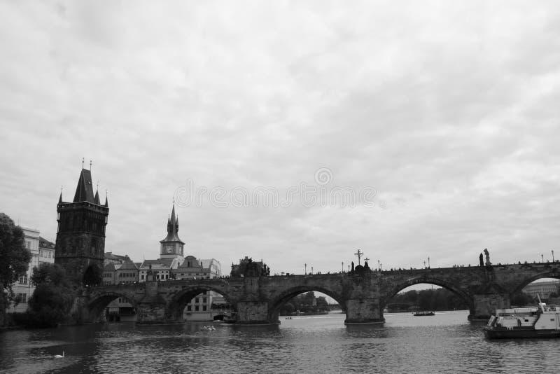 Fiume vivente la Moldava di Europa Kampa di viaggio della repubblica Ceca di czechia immagini stock