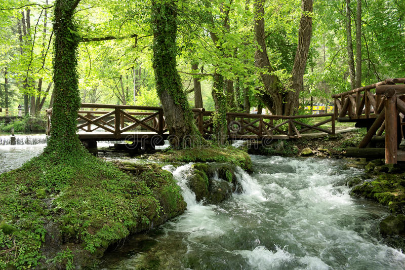 Fiume Vrelo, tributario giusto del fiume Drina immagine stock libera da diritti