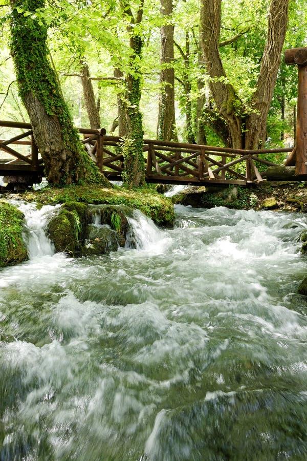 Fiume Vrelo, tributario giusto del fiume Drina immagini stock libere da diritti