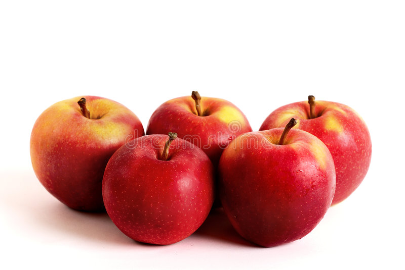 Five apples stock photography