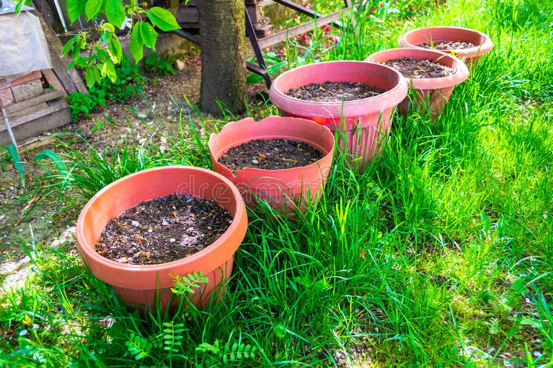 Five big flower pots with garden potting soil under a tree, laid down in fresh green grass. royalty free stock image