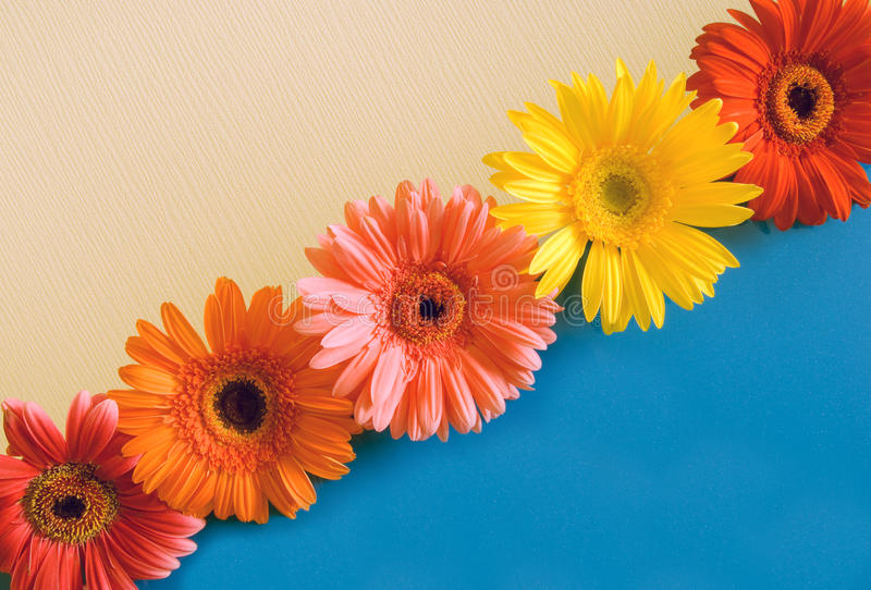 Five bright colours on a diagonal stock photo