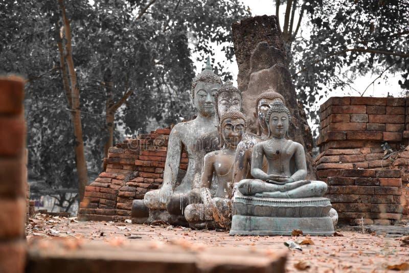 Five Buddha statues wat aranyik royalty free stock image