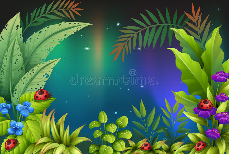 Five bugs in a rain forest. Illustration of the five bugs in a rain forest vector illustration