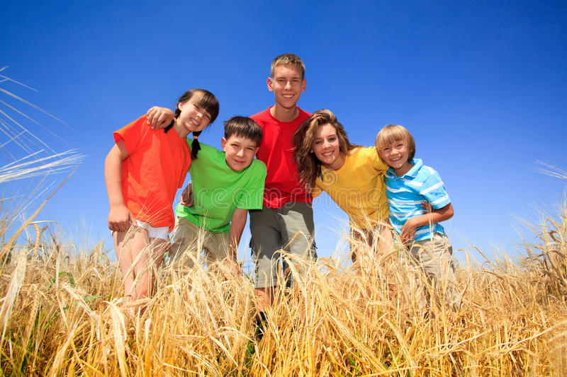 Five children in wheat field. Five siblings in colorful tee shirts standing in a wheat field royalty free stock photography