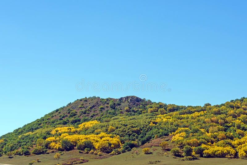 five Color mountain autumn scenery stock images