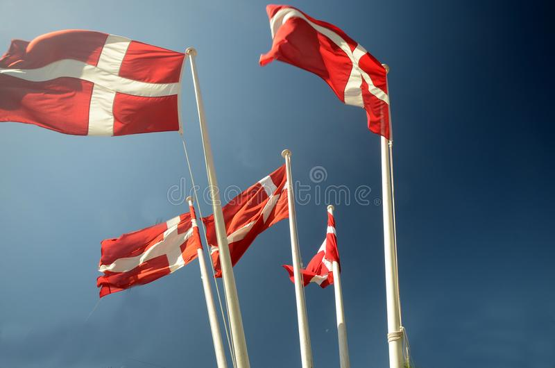 Group of Danish flags. Five Danish flags `Dannebrog` seen against a blue sky royalty free stock image