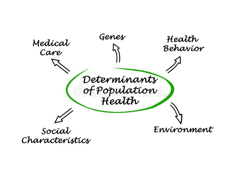 Determinants of Population Health vector illustration