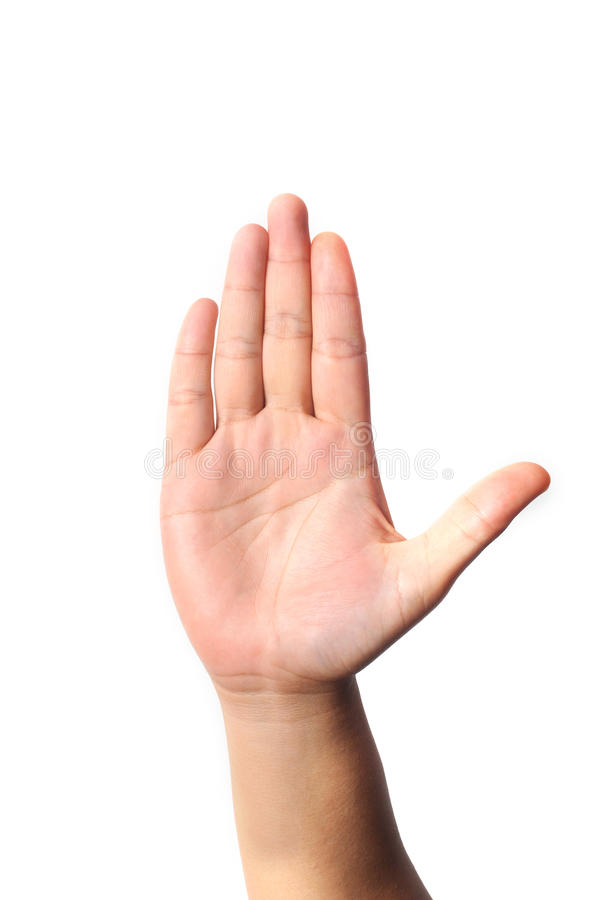 Five Fingers. Right hand five fingers isolated with white background royalty free stock image