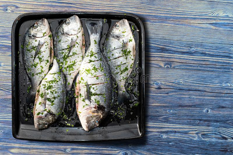 Five fresh fish prepared for baking lying on the baking plate stock photos