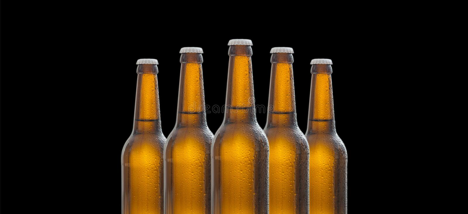 Five glass beer bottles isolated on black background stock photography