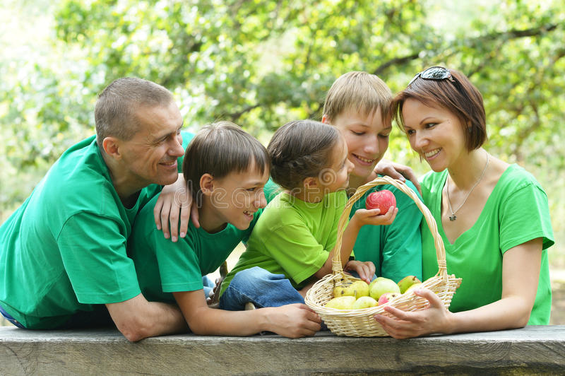 five is having picnic royalty free stock images