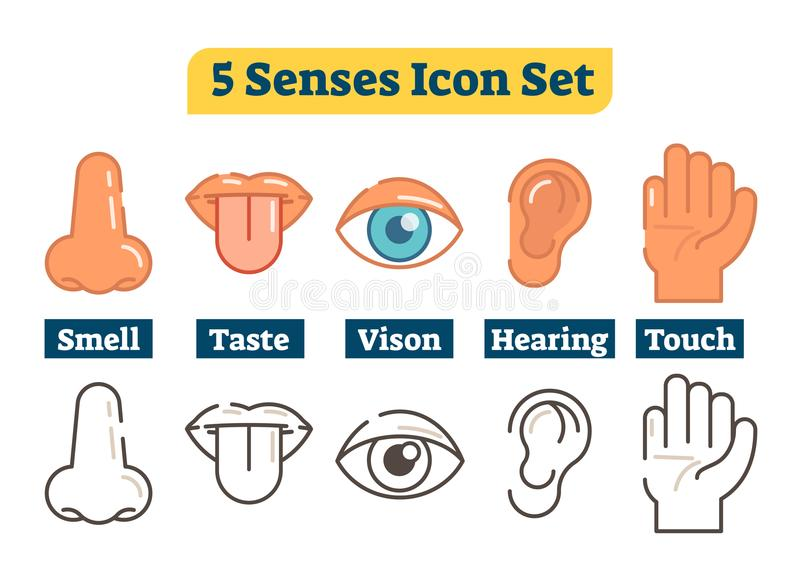 Five human body senses: smell, taste, vision, hearing, touch. Vector flat illustration icons. With nose, lips, tongue, eye, ear and hand. Color and outline stock illustration