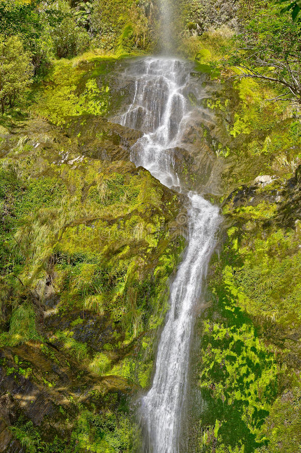 Five Mile Creek Falls royalty free stock image