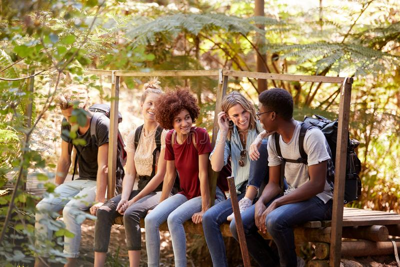 Five millennial friends sitting on a bridge in a forest talking during a hike, three quarter length royalty free stock images