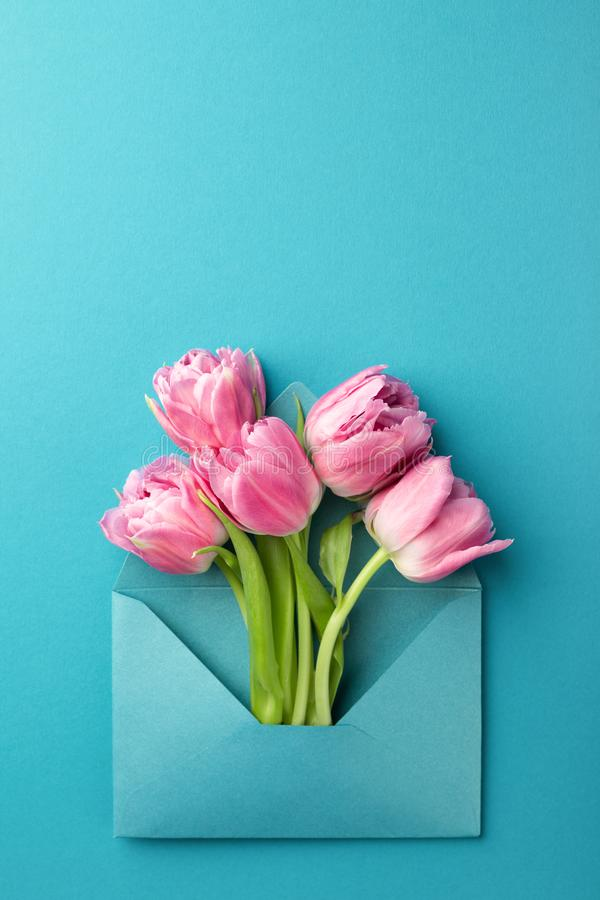 Pink tulips in envelope. royalty free stock photo