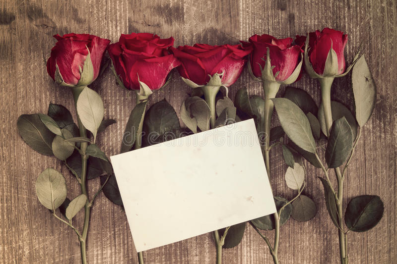 Five red roses and blank card stock photos