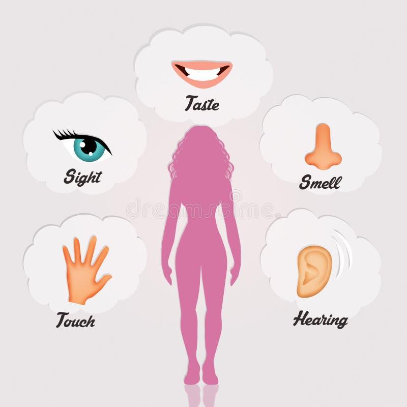Five senses vector illustration