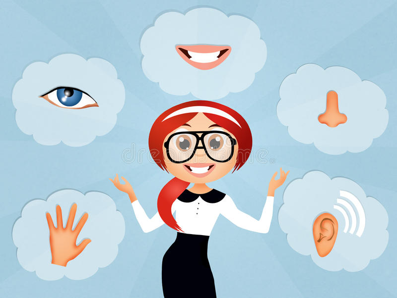 Five Senses royalty free illustration