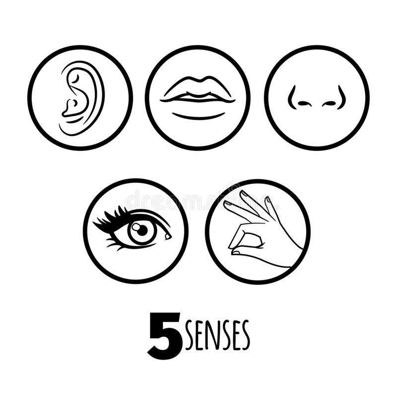 Five senses outline icons vector of set royalty free illustration
