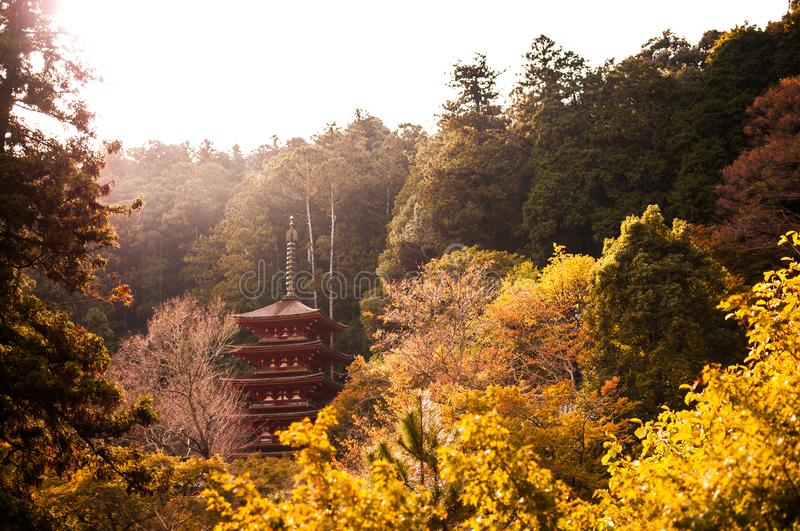 Five story pagoda at Hasedera Temple, Nara, Japan. Five story pagoda at Hasedera Temple is located in the mountains and was founded in 6th century royalty free stock images