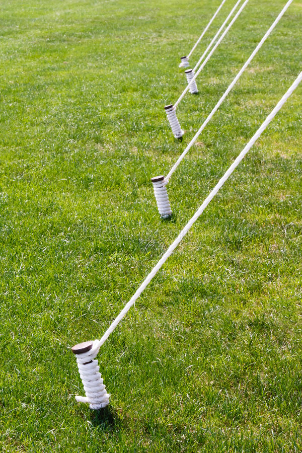 Five Tied Tent Stakes. Tent stakes also known as tent pegs are wrapped and tied with white rope set against a vibrant green summer lawn royalty free stock photography