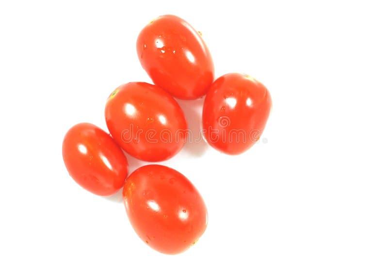Five tomato stock photos