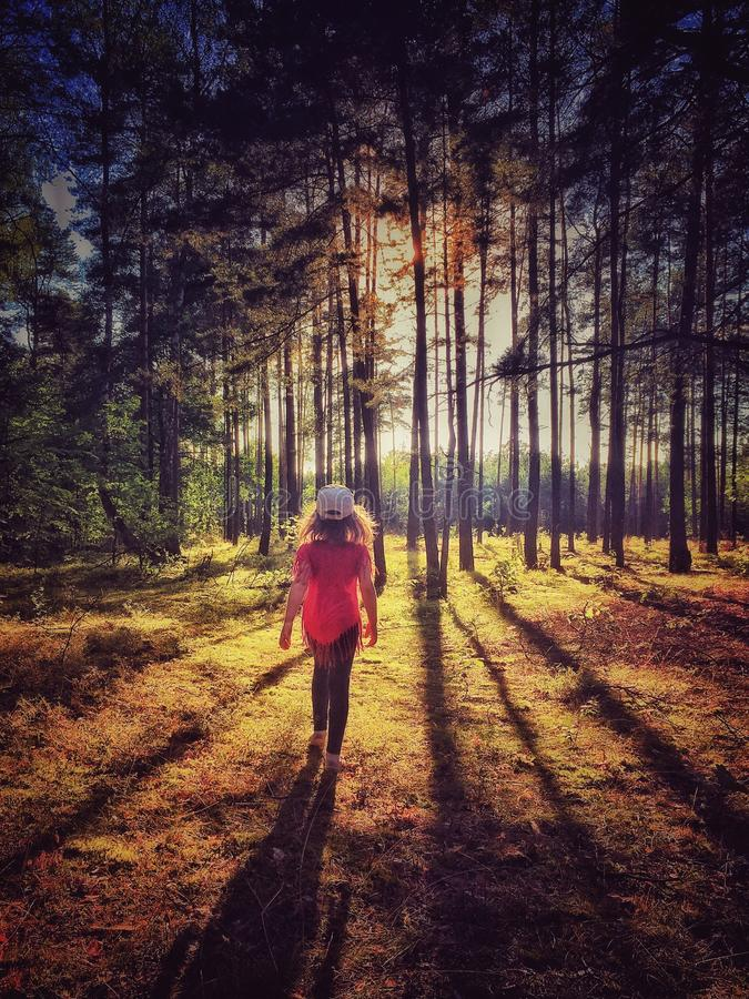 Forest in Poland. Five years old girl walking in forest in Sulejowek near Warsaw stock photos