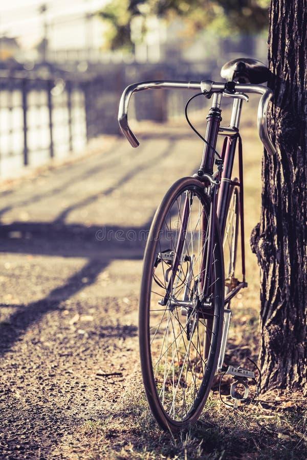 Fixad kugghjulcykel för cykel väg royaltyfria bilder