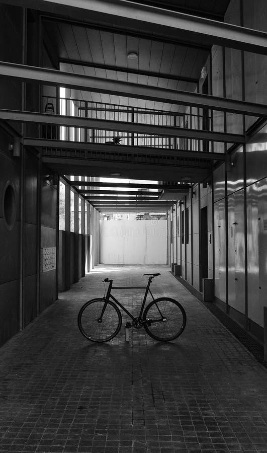 Fixie cyklar royaltyfria foton