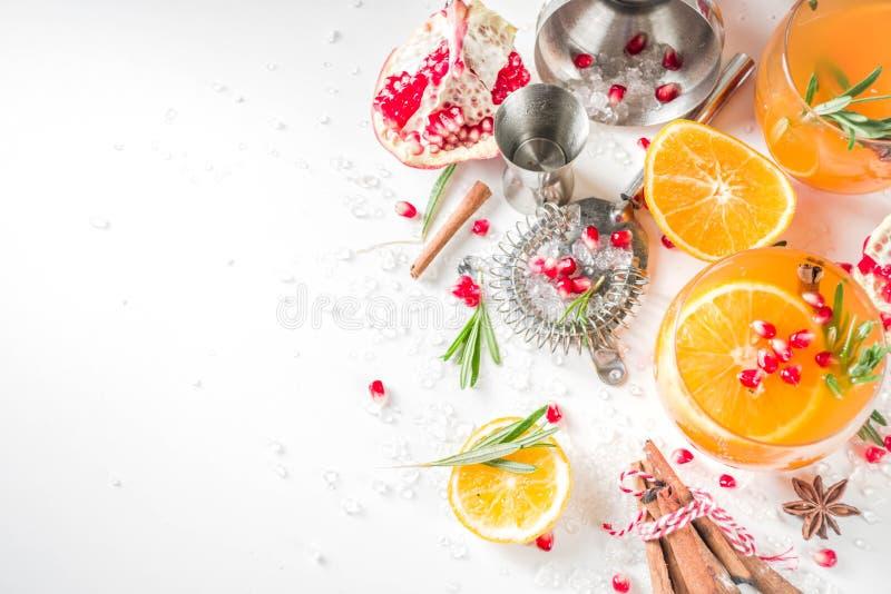 Fizz de naranja y romero imagenes de archivo