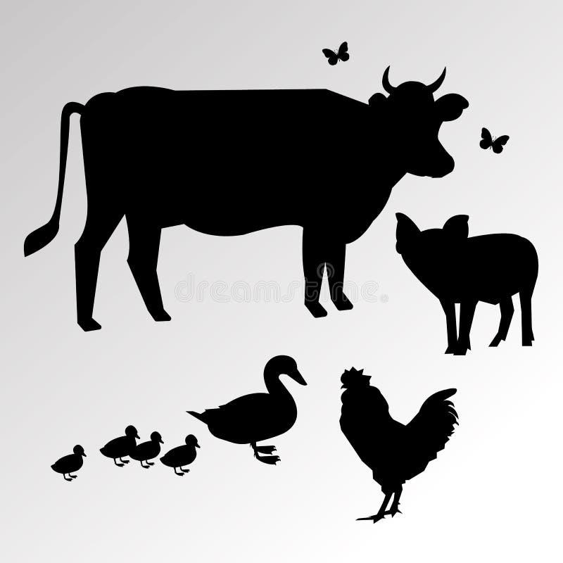 Fjäder för natur för fågel för höna för hane för lantgård för kovektortecknad film grafisk vektor illustrationer