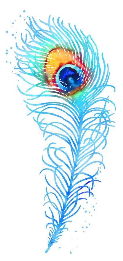 Fjäder för vektorvattenfärgpåfågel stock illustrationer