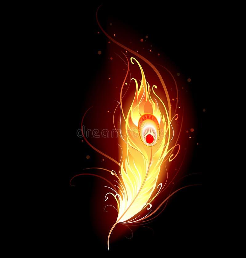 fjäder phoenix royaltyfri illustrationer