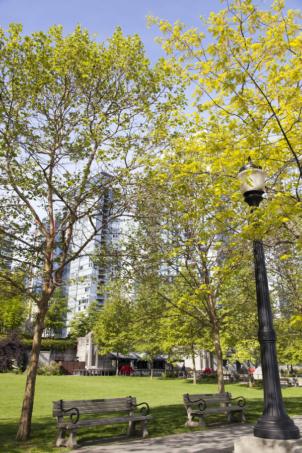 Download Fjäder vancouver fotografering för bildbyråer. Bild av trees - 78726535